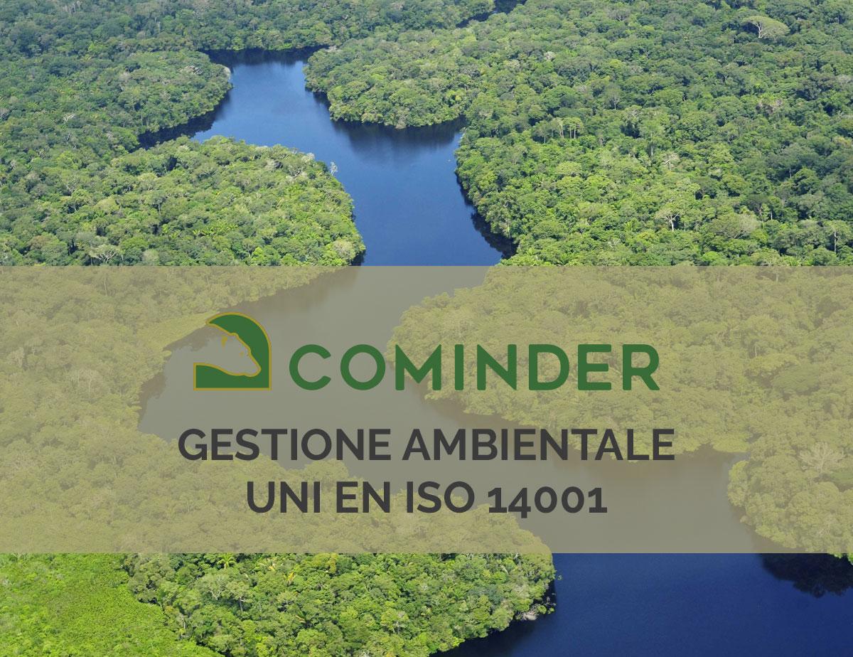 Lo standard di gestione ambientale UNI EN ISO 14001